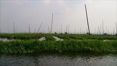 Inle Lake インレー湖 写真 photo