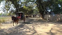 インワ サガイン Inn Wa Sagaing 写真 photo ミャンマー