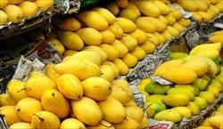 mango、マンゴー、モーラミャイン・トラベル・インフォメーション、写真