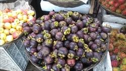 ミャンマー、モーラミャイン、マンゴスチン、フルーツの女王、果物、mangosteen、