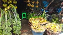 バナナ、ミャンマー、モーラミャイン、Myanmar,Mawlamyine.Banana