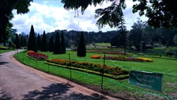 ナショナル カンダウィ ガーデン National Kandawgyi Gardens 公園 写真 photo
