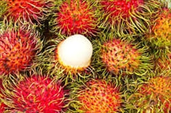 ミャンマー、モーラミャイン、ランブータン、フルーツ、果物、写真、Rambutan.