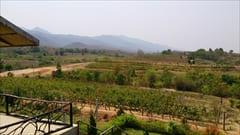 レッドマウンテン エステート ワイナリー Red Mountain Estate Winery 写真 photo 観光